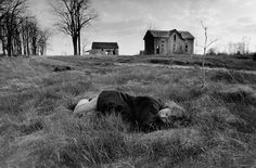 Larry-Towell