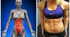 Hay quien tiene pesadillas cuando le dicen que tiene que hacer abdominales para tener un estómago plano y un abdomen fuerte. Hoy te vamos a enseñar un ejercicio el cual los expertos dicen que pueden reemplazar a 1000 abdominales. Es un ejercicio estático , donde sorportamos todo el peso de nuestro cuerpo en las manos …