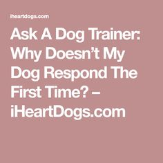 Ask A Dog Trainer: Why Doesn't My Dog Respond The First Time? – iHeartDogs.com