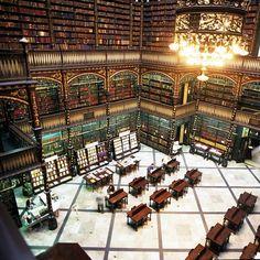 49 des bibliothèques les plus belles du monde