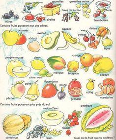 Et vous, quel est le fruit que vous préférez ?