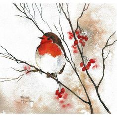 Red Robin, Red Berries by Rachel McNaughton @ Mini Gallery - Watercolour Painting - http://goo.gl/a8AuBM