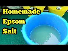 Epsom Salt का Optionवो भी Homemade Organic Fertilizer Rich In Magnesium Epsom Salt For Plants, Garden Compost, Gardening, Organic Liquid Fertilizer, Tulsi Plant, Mealy Bugs, Ph Meter, Grow Bags, Hanging Pots