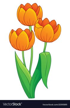 Image with tulip flower theme 1 vector image on Art Drawings For Kids, Drawing For Kids, Cartoon Flowers, Tulips Flowers, Sunflowers, Floral Border, Fabric Painting, Painted Rocks, Flower Art