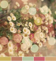 August - November wedding colors