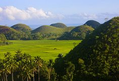 Chocolate Hills, Bohol, The Philippines Bangkok, Chocolate Hills, Great Blue Hole, Bohol Philippines, Weird World, Hanoi, Nature Scenes, Natural Wonders, Belize