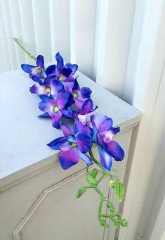 57 New Ideas For Diy Wedding Centerpieces Purple Blue Orchids Blue Orchid Wedding, Blue Orchid Flower, Blue Orchids, Diy Wedding Flowers, Wedding Ideas, Dendrobium Orchids, Trendy Wedding, Wedding Stuff, Blue Wedding Centerpieces