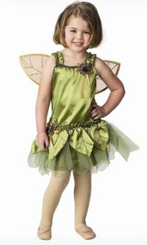 Beautiful Child Garden Fairy Costume