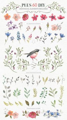 꽃관련 #칼라패턴 도 끍어 모아 봤습니다. 자수에 많은 도움 되세요 ^^ #프랑스자수 #도안 #pattern #칼라...