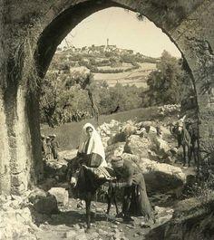 Nablus-نابلس: NABLUS - Late 19th, early 20th c. 12 (The road to Nablus)