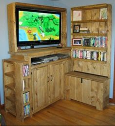 Toy Storage Entertainment Center