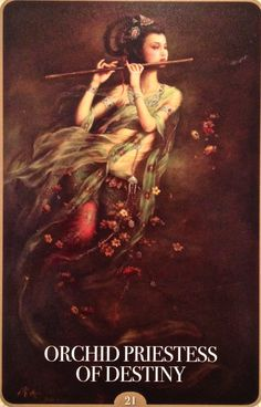 Kuan Yin Oracle Cards Orchid Priestess of Destiny The Orchid Priestess of your highest spiritual destiny calls to you now, beloved. She calls you to your purpose, path and Soul passion. You are called to rise again and again, to live up into your potential For today's free oracle card reading visit: http://www.online-tarot-readings-by-amber.info/freeoraclecardreadings.html