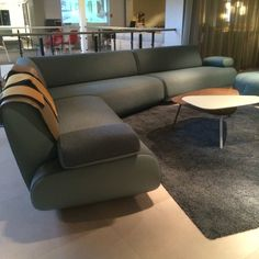 Leolux Guadeloupe Sofa, Couch, Create, Inspiration, Furniture, Home Decor, Homemade Home Decor, Biblical Inspiration, Settee