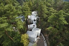 House built around and in between the trees. Nice! Residence of Daisen / Keisuke Kawaguchi+K2-Design