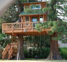 30 evocadoras casas de madera en el árbol  #madera