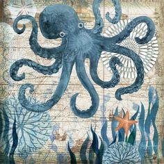 Monterey Bay Octopus by Geoff Allen | Ruth Levison Design