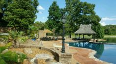 """Windmill palms in Tn. Lush aquatic plants, thatched umbrellas & a swim up bar. Can you say """"Stay-cation""""! Swim Up Bar, Natural Swimming Pools, Aquatic Plants, Staycation, Ponds, Windmill, Umbrellas, Lush, Patio"""