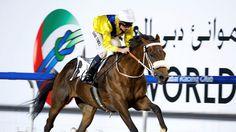 Hotpot Maftool foiled at Meydan - Horse Racing - Erupt Sports