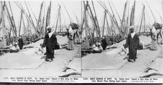 WHEAT GROWING IN EGYPT. The 'Golden Grain' Heaped in Bulk Along the Water-Front (Market Place) Waiting Export Buyers. Copyright 1912