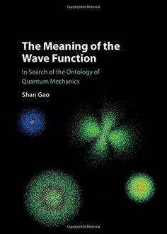 The Meaning of the Wave Function: In Search of the Ontology of Quantum Mechanics