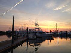 Big Rock Blue Marlin Fishing Tournament, Morehead City, NC June 8-16