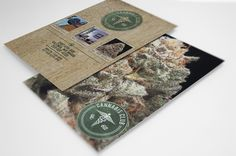 Ad Design for Cannabis Club Collective