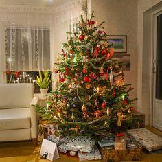 Christmas Trees For Kids, Cosy Christmas, Christmas Feeling, Christmas Scenes, Holiday Tree, Retro Christmas, Christmas Tree Decorations, Christmas Holidays, Christmas Travel