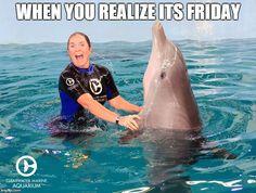 Who else is having that #FridayFeeling?!