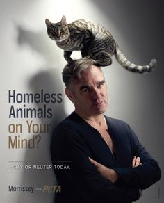 Morrissey....