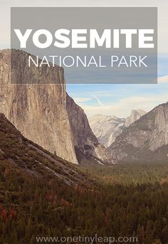 We were overwhelmed by the beauty and immensity of Yosemite National Park. Nothing says adventure quite like the Half Dome and a mother bear and cubs! #YosemiteNP #Yosemite #USroadtrip