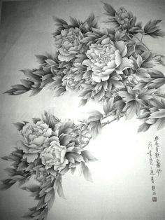 Peony in black and white
