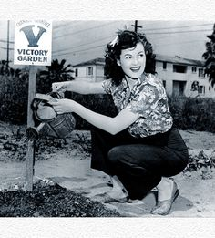 Original 1940's WWII Victory Garden Photo
