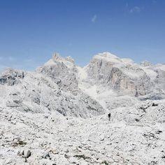 Signs of life #hiking #hikingadventures #rifugiorosetta #summer2017