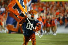 Aubie the Tiger - Auburn