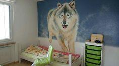 Wolf sprayed in a kids room 5