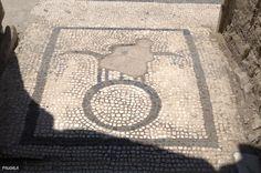 Mosaico en las termas femeninas. Yacimiento de Herculano. Italia.