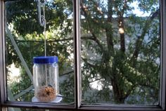 We finally decided on hanging the feeder outside our window so we could see the birds when they come to visit. We used an over-the-door coat hook on the top of our window to suspend it. Make A Bird Feeder, Bird Feeders, Surly Bike, Door Tree, Peanut Butter Jar, Eco Architecture, Green Building, Sustainable Design, Recycled Materials