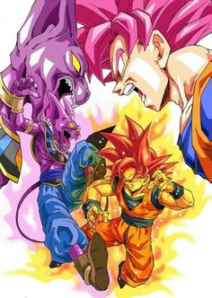 God of Destruction Lord Beerus vs Super Saiyan God Goku