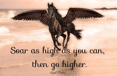 native american sayings and quotes | go-higher.jpg