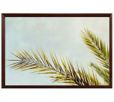 "Frond II Framed Print By Meg Venter, 28x42"", Ridged Distressed Frame, Espresso, No Mat"