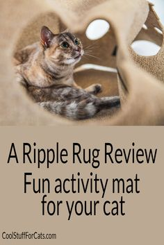 The Ripple Rug is an Interactive Cat Activity Play Mat. We review this new and innovative product and tell you where to get the best price. Click here Now for full review.