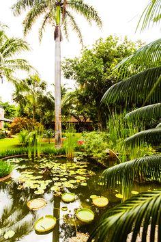 Hacienda Xcantún #Xcantun #Yucatan #YoDescubriYucatan