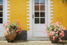 Real Wedding | Casamento Ana & Franz | Instante Fotografia | Fotógrafos de Casamento Portugal | Wedding Photography Portugal, Wedding Inspiration, Plants, Garden, Photography, Wedding Shot, Fotografie, Garten, Photograph