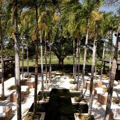 """@jpbelangerg's photo: """"Paraíso golfístico... @buenaventuragc @buenaventuraresort"""""""