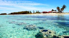 Snorkeling, paddle boarding, and kayaking at Dead Man's Reef in freeport Bahamas