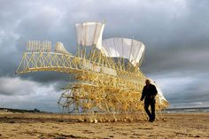 Theo Jansen's animarae adulari strandbeest. Kinetic sculptures made from PVC tubing and powered by the wind.