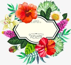 vector illustration with watercolor flowers. beautiful bouquet and sign with tropical plants on white background. composition with monstera and palm leaves lily chinese hibiscus. Tropical Frames, Tropical Flowers, Floral Flowers, Tropical Plants, Watercolor Logo, Watercolor Flowers, Flower Border Png, Flower Borders, Imagenes Free
