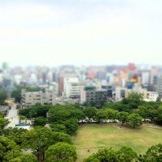 Hi today fukuoka city.