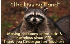 """The Kissing Hand"" - making raccoons seem cute & harmless since 1993. Thank you Kindergarten teachers!"