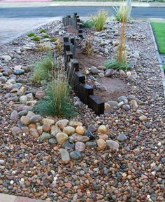low maintenance front garden - Google Search